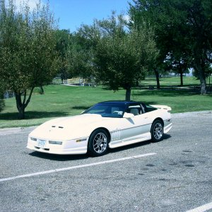 Corvette_Pics_81105_Thompson_Park_002