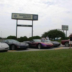 Vettes at the plant