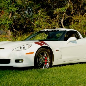 Ron Fellows Z